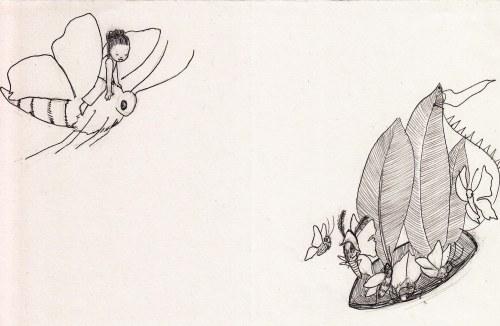 moth pirates.flying