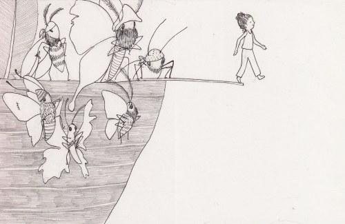 moth pirates.walk the plank