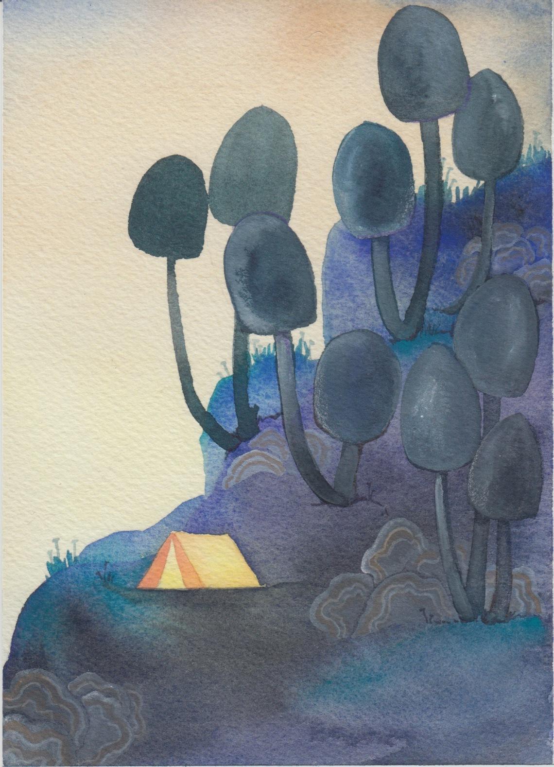 mushroom campsite.jpeg